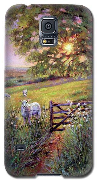 Sheep At Sunset Galaxy S5 Case