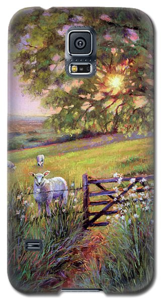 Sheep At Sunset Galaxy S5 Case