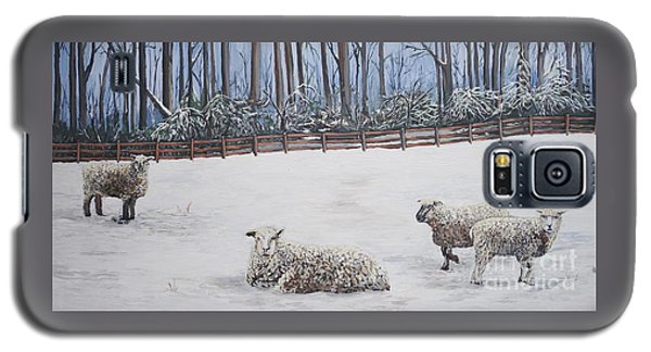 Sheep In Field Galaxy S5 Case