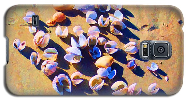 Galaxy S5 Case featuring the photograph Shell Collection by Roberta Byram