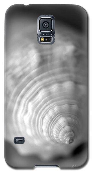 Shell Dream Galaxy S5 Case
