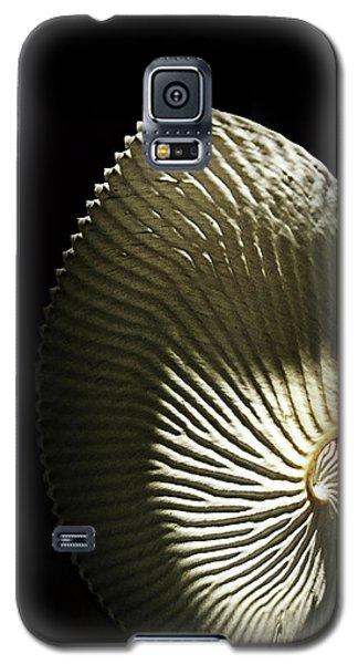Seashell Fan On Black  Galaxy S5 Case