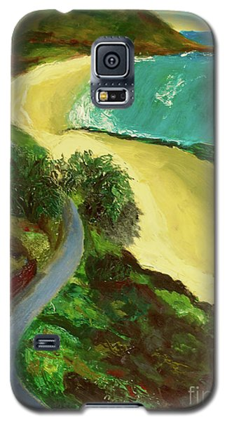 Galaxy S5 Case featuring the painting Shelly Beach by Paul McKey
