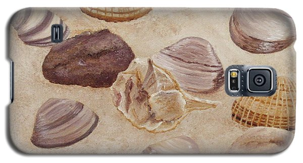 Shells And Stones Galaxy S5 Case