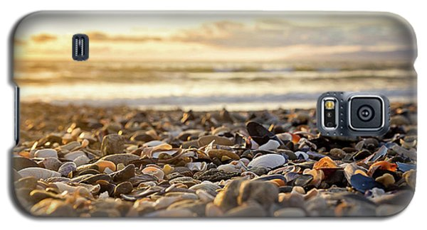 Galaxy S5 Case featuring the photograph Shells At Sunset by April Reppucci