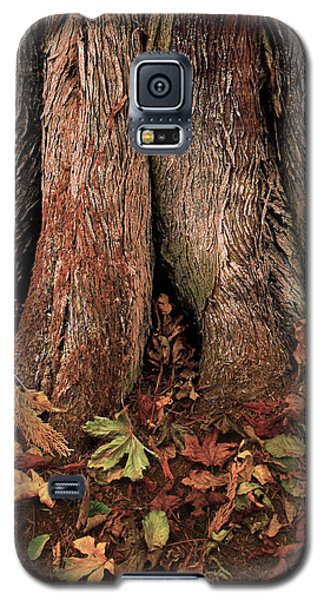 Shelter Galaxy S5 Case