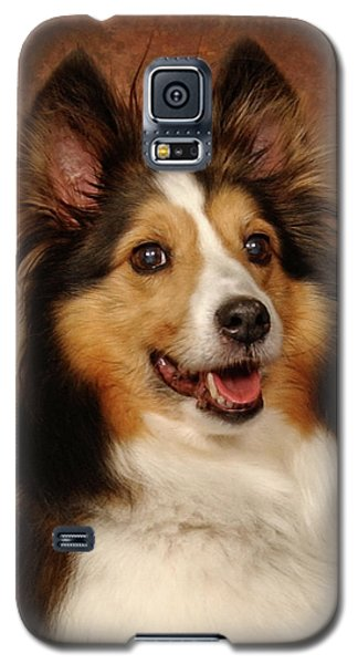 Galaxy S5 Case featuring the photograph Sheltie by Greg Mimbs