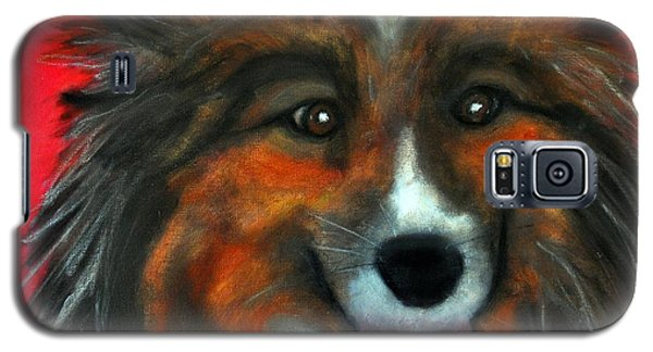 Sheltie- Maggie Galaxy S5 Case by Laura  Grisham