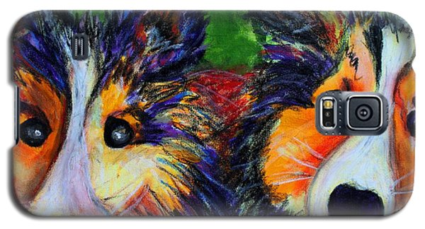 Sheltie- Whisper And Secret Galaxy S5 Case by Laura  Grisham