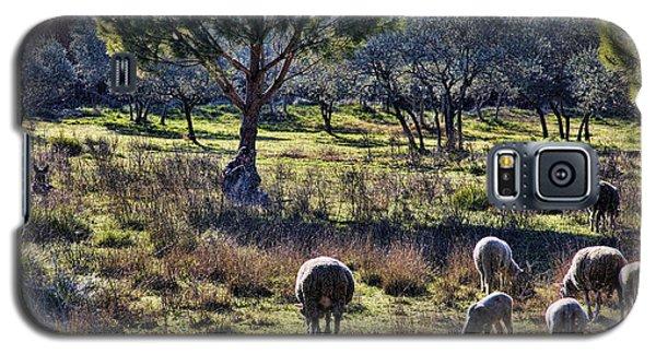 Shepherd And Sheep Galaxy S5 Case