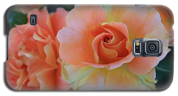 Galaxy S5 Case featuring the photograph Sherbert Rose by Marna Edwards Flavell
