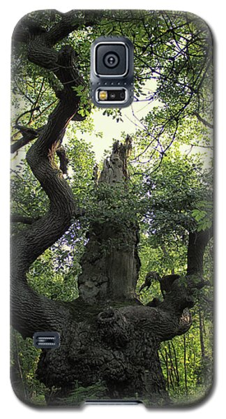 Sherwood Forest Galaxy S5 Case by Martin Newman