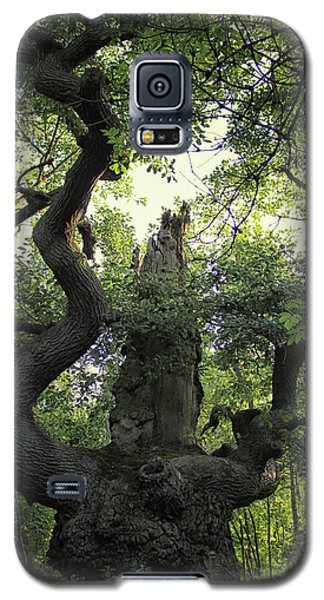 Dungeon Galaxy S5 Case - Sherwood Forest by Martin Newman