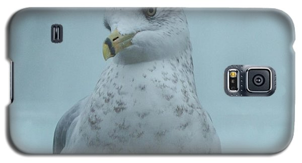 She's Over There Galaxy S5 Case