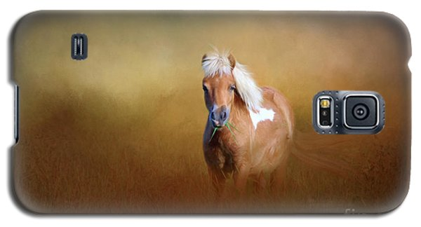 Shetland Pony Galaxy S5 Case