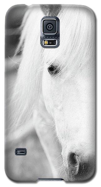 Shetland Pony Galaxy S5 Case by Tina Lee