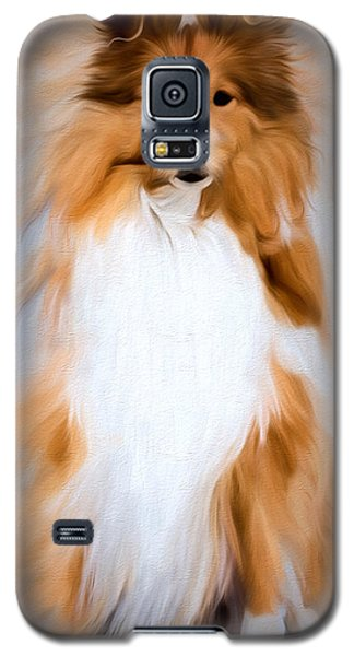 Galaxy S5 Case featuring the photograph Shetland Sheepdog - Sheltie by Ericamaxine Price