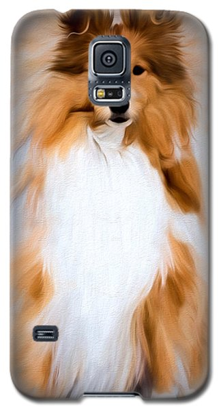 Shetland Sheepdog - Sheltie Galaxy S5 Case