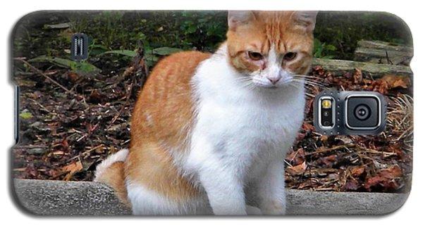 Shiloh Galaxy S5 Case