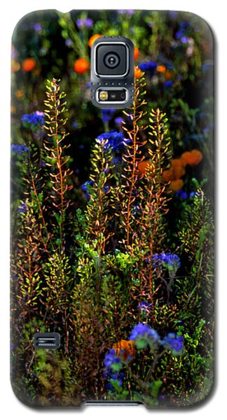 Shimmers Galaxy S5 Case