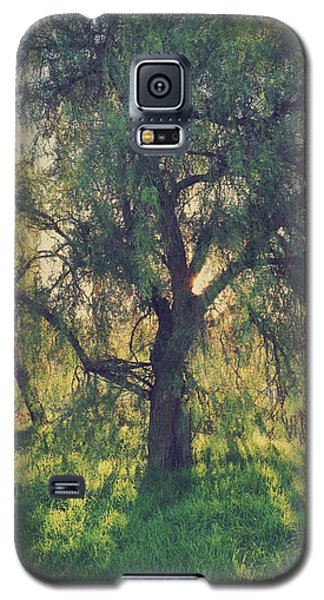 Galaxy S5 Case featuring the photograph Shine Your Light by Laurie Search