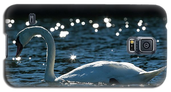Galaxy S5 Case featuring the photograph Shining Swan by Michelle Wiarda
