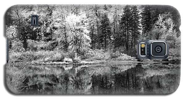 Shining Trees Galaxy S5 Case