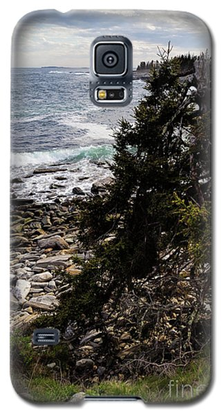 Galaxy S5 Case featuring the photograph Shore And Battered Tree, Pemaquid Point, Bristol, Maine  -60084 by John Bald