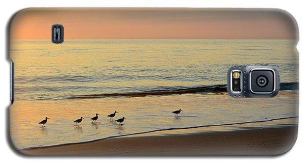 Shorebirds 9/4/17 Galaxy S5 Case