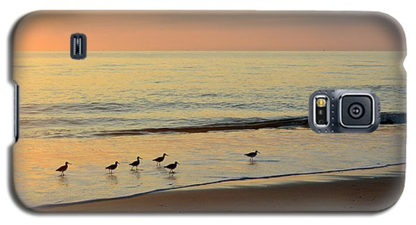 Shorebirds 9/4/17 Galaxy S5 Case