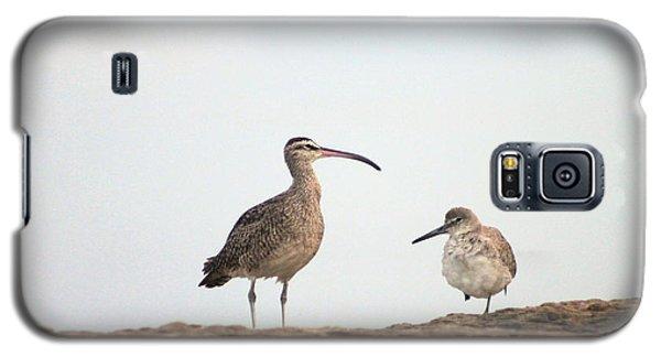Shorebirds Of Windansea Beach Galaxy S5 Case
