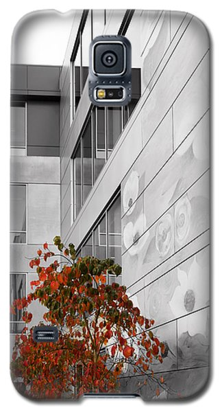 Shoreline City Hall Galaxy S5 Case