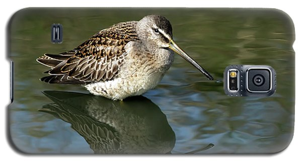 Galaxy S5 Case featuring the photograph Short-billed Dowitcher by Sharon Talson