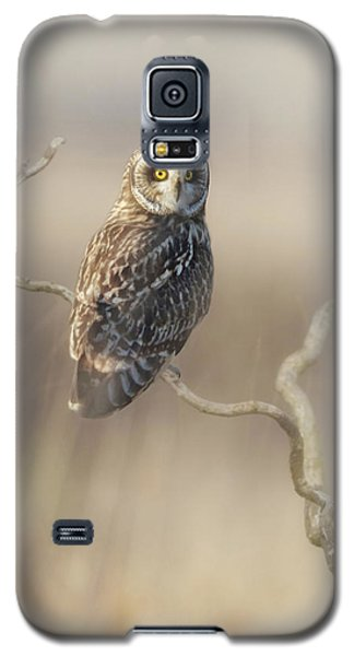 Galaxy S5 Case featuring the photograph Short-eared Owl by Angie Vogel