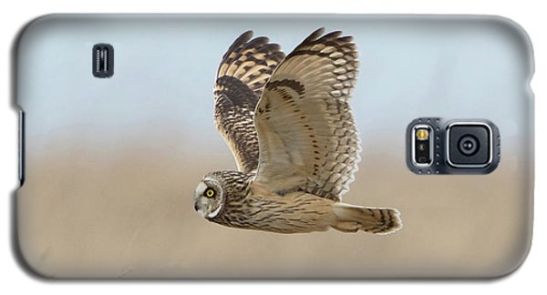 Short-eared Owl Hunting Galaxy S5 Case