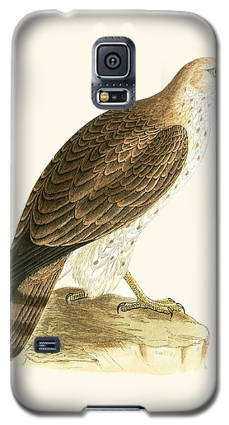 Short Toed Eagle Galaxy S5 Case by English School