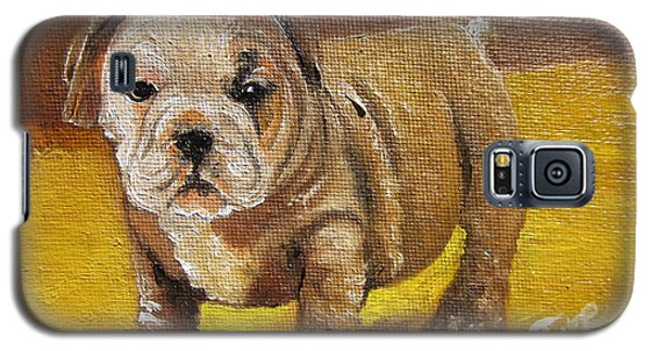 Chloe The   Flying Lamb Productions      Shortstop The English Bulldog Pup Galaxy S5 Case