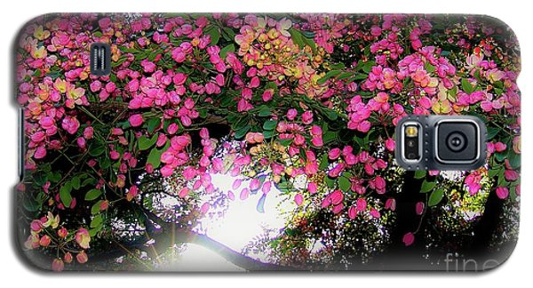 Shower Tree Flowers And Hawaii Sunset Galaxy S5 Case