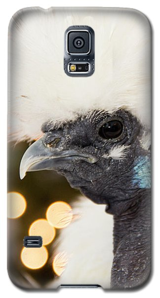 Showgirl A.k.a. Naked Neck Silkies Galaxy S5 Case