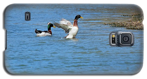 Galaxy S5 Case featuring the photograph Showing Off by Teresa Blanton