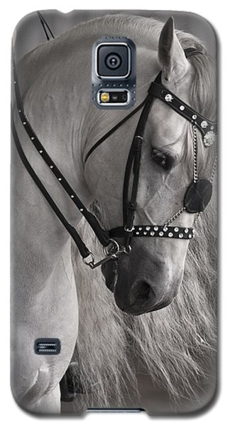 Galaxy S5 Case featuring the photograph Showtime D9054 by Wes and Dotty Weber