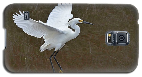 Showy Egret Suspended Annimation Galaxy S5 Case