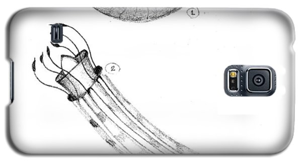 Galaxy S5 Case featuring the drawing Shrimp by Fanny Diaz