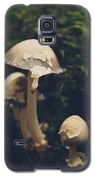 Shroom Family Galaxy S5 Case by Shane Holsclaw
