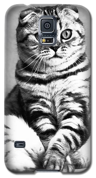 Shy Cat Galaxy S5 Case