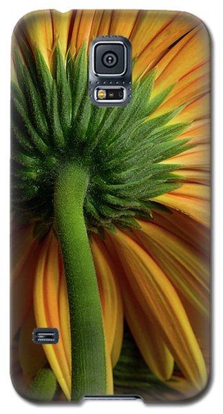 Shy Daisies Galaxy S5 Case