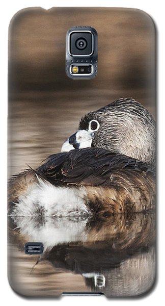 Shy Grebe Galaxy S5 Case by Ruth Jolly