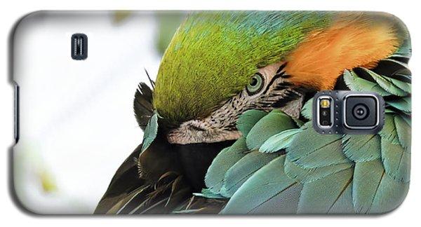 Shy Macaw Galaxy S5 Case