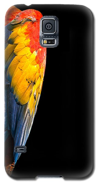Galaxy S5 Case featuring the photograph Shy Macaw by Rob Amend