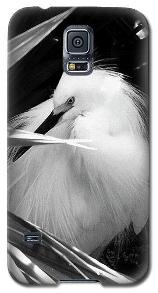 Shy Snowy Egret Galaxy S5 Case